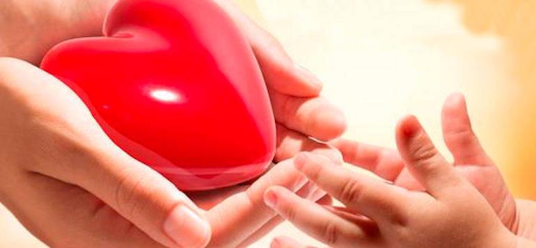 Orgaan donatie