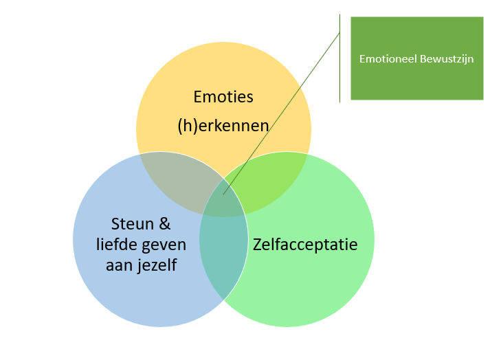 emotioneel-bewustzijn